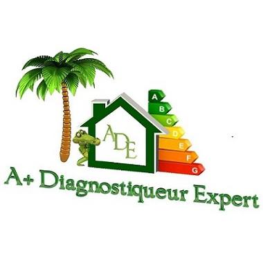 A+ Diagnostiqueur Expert