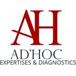 Ad Hoc Expertise