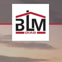BLM DIAG