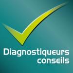 Diagnostiqueurs Conseils