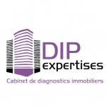 Dip expertises