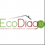 ECO DIAG 33
