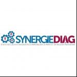 Synergiediag