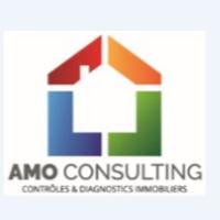 AMO CONSULTING