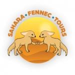 Sahara Fennec Tours